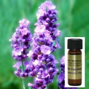 Lavender Oil One Dram glass container